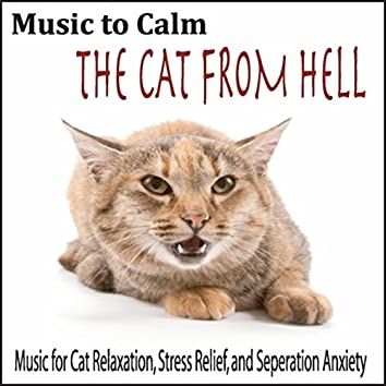 Music to Calm the Cat from Hell: Music for Cat Relaxation, Stress Relief, And Seperation Anxiety