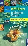 Riff-Führer Indischer Ozean