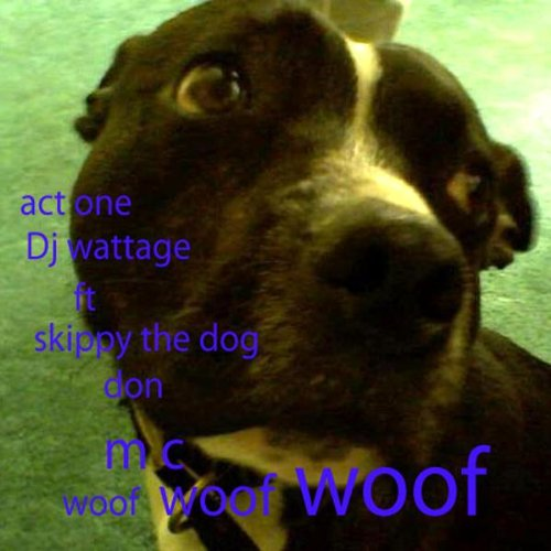 Flipping Bricks Feat Mc German Skippy The Dog Don Mc By Dj Wattage On Amazon Music Amazon Com
