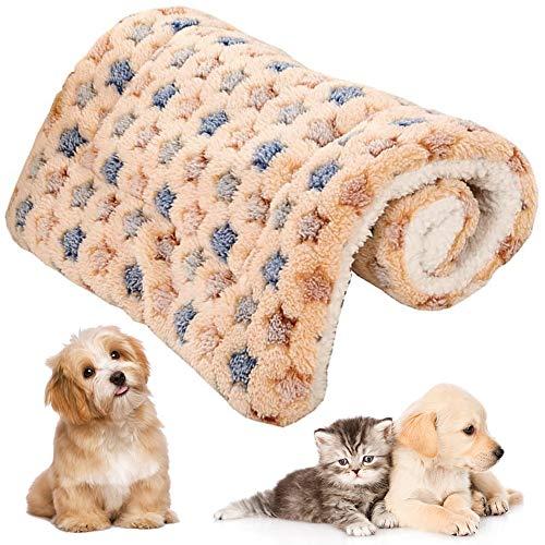 FANDE Hundematte, Haustier Hund Decke, Welpen Mat Pad, Schlafbett für Kleine Hunde, Haustiere, Welpen, Kätzchen Schlafen Bett Matte Herbst Winter Bett Kissen (M, 55 * 42 cm)