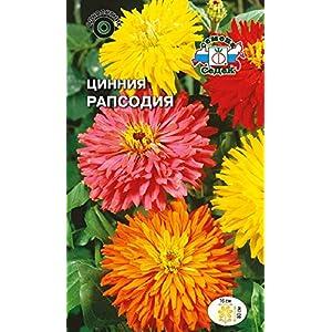 Russian Flower Zinnia Rhapsody (Elegant, Kaktus-Shaped, a Mixture of White, Yellow, Orange, red, Purple Flowers). Euro 0.5
