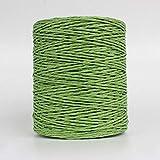 YEZINB 500g Rollo de Hilo de Paja de Rafia Hilo de Ganchillo para Tejer Sombrero de Paja de Verano Bolsos de Mano Cojines cestas Material Hilo de Tejer a Mano, Verde Hierba