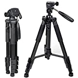Zomei Z666 Portable Professional Aluminium Tripod with Pan Head and Carrying Bag for DSLR Cameras DV Video Camcorders Applicable For Canon Nikon Sony