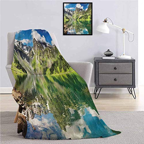 Luoiaax Watercolor Flower Fluffy Plush is Soft and comfortableSoft Color Flora Throw The daybed Office Camp W70 x L90 Inch