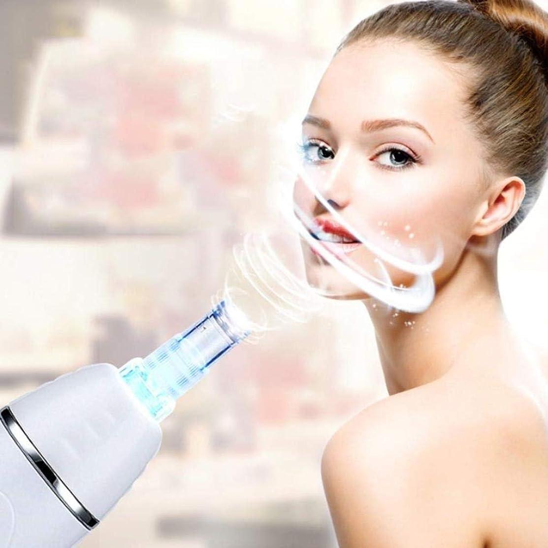 通訳話をするマニフェスト美容機器、顔にきび毛穴クリーナー、にきびの除去、しわ、メラニンの沈殿を減らす