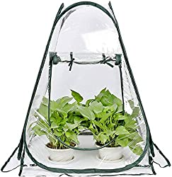 Best Classroom Greenhouses - Porayhut Clear Greenhouse