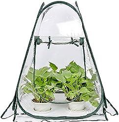 Best Classroom Greenhouses - Porayhut Clear Greenhouse