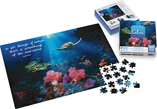 300-Piece Calm Puzzle for Adults and Kids Ages 8 and up, Calm Coral