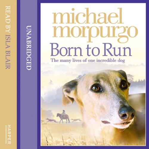 Born to Run cover art