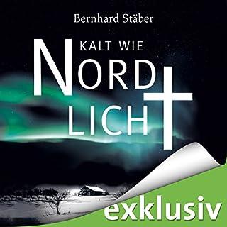 Kalt wie Nordlicht (Arne Eriksen 2) cover art