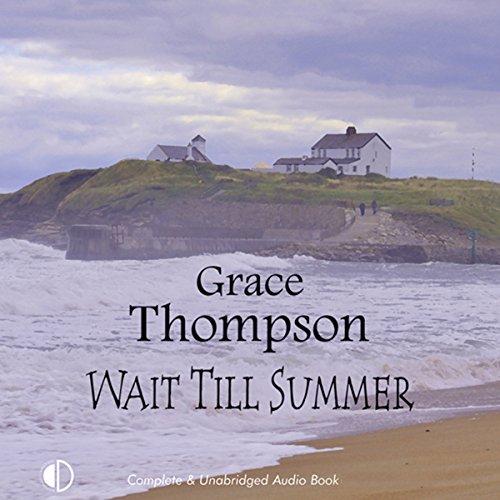 Wait Till Summer audiobook cover art