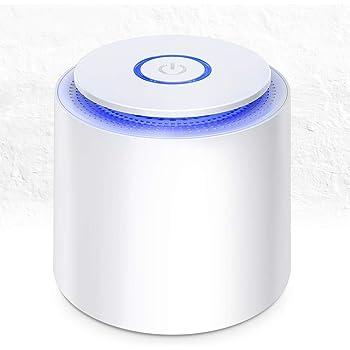 Mini Purificador de Aire con Filtro HEPA Eficiente,USB Purificador de Aire Portátil de Escritorio con Luz Nocturna y Función de Aromaterapia para Hogar,Oficina Eliminar Polvo, Polen, Humo, olor,PM2.5: Amazon.es: Hogar