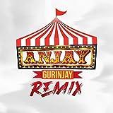Anjay Gurinjay (Febri Hands Remix)