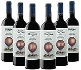 Vino Tinto Marqués de Burgos Roble (D.O.Ribera del Duero) - 6 botellas de 750 ml - Total: 4500 ml