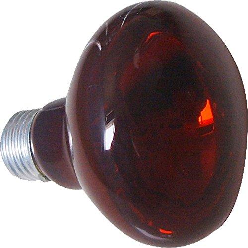 Reptizoo R63075 infraroodlamp, 75 W