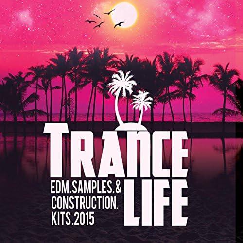 Royalty Free Trance DJs