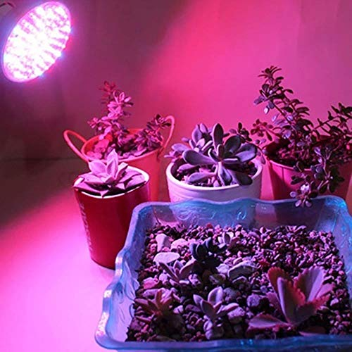 Full Spectrum Plant Lights, E27 Led Grow Light Bulb Full Spectrum Plant Light E14 Gu10 Mr16 Uv Ir Led Grow Lamp voor hydrocultuur Bloemen Groenten 3W, 220V E14 3W