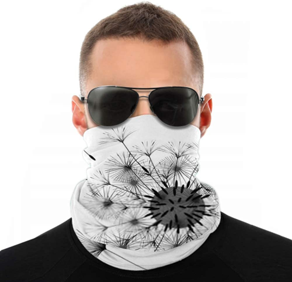 Headbands For Men Women Neck Gaiter, Face Mask, Headband, Scarf Abstract Background Dandelion Design Wind Blows Turban Multi Scarf Double Sided Print Sweat Bands Headbands Women For Sport Outdoor