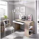 HABITMOBEL Mesa Escritorio, Mueble de despacho, Cajon Y Hueco, Medidas: Alto 74 cm x Ancho 115 cm x Fondo 50 cm