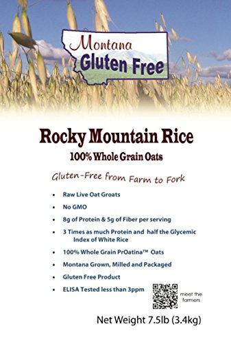 Rocky Mountain Rice ~ 100% Raw Oat Groats ~ Gluten Free Rice Alternative 7 1/2 Pound Bag