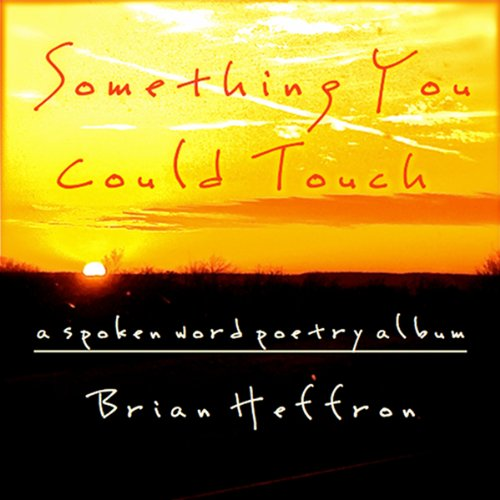 Something You Could Touch audiobook cover art
