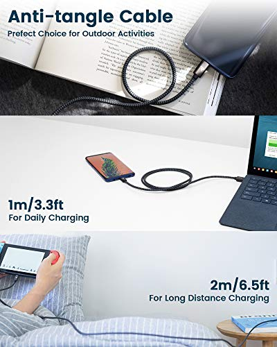 RAMPOW USB C Kabel, USB C Ladekabel, USB Typ C Kabel - QC 3.0 USB 3.0 Schnelles Aufladen und Synchronisation - Aluminum USB C Kabel Kompatibel für Samsung Galaxy, HTC und Mehr - 0,2m Space Grau