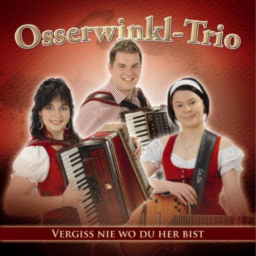 Slavko Mix - Medley / Stell dich ein in Oberkrain