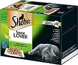 Sheba Sauce Lover, Feine Häppchen in Sauce für ausgewachsene Katzen, Alleinfuttermittel in der Schale, 72-er Pack ( 6 x 12 x 85 g)