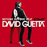 Nothing But The Beat (29 Titre