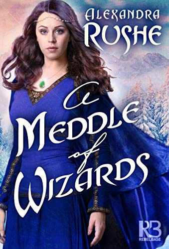 A Meddle of Wizards (Fledgling Magic Book 1) (English Edition)