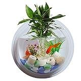 LFONCE Creativo acrílico montado en la pared pecera tazón florero acuario maceta burbuja acuario decoración maceta, maceta colgante, decoración del hogar (transparente)