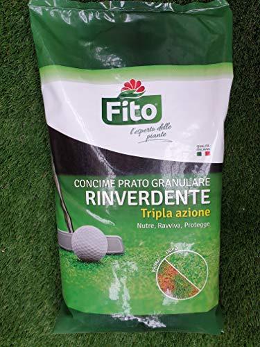 Fito RINVERDENTE ANTIMUSCHIO GRANULARE 10Kg Concime Prato a Tripla Azione, Verde