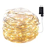 Fairy Lights Plug in, 33Ft 100 Led Waterproof Firefly Lights, Adaptor Included, Starry String Lights for Wedding Indoor Outdoor Christmas Patio Garden Decoration, Warm White