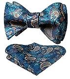 HISDERN Panuelo floral para hombre Paisley Jacquard Wedding Party Self Self Bow Tie & Pocket Square...