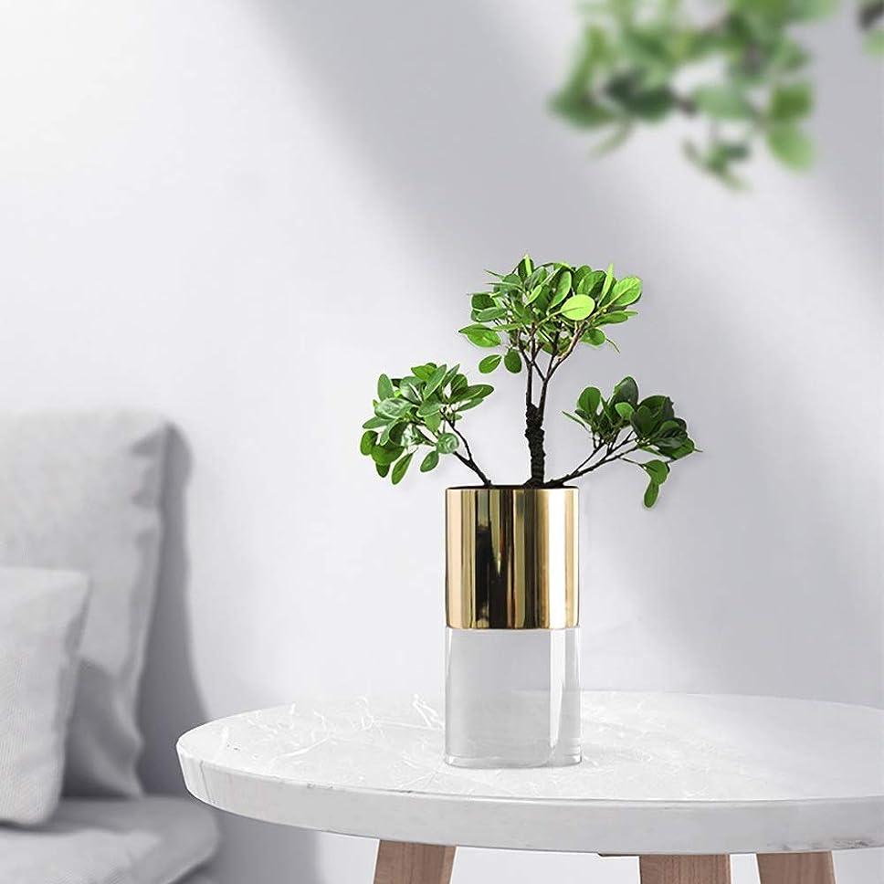 幸運な借りる歌手ホリデーギフト 金属メッキ工芸挿入近代的なミニマリストのクリスタルガラスの花がクリエイティブホーム花瓶の宝石の装飾品に10 * 20センチメートルをflowerware (色 : Round)