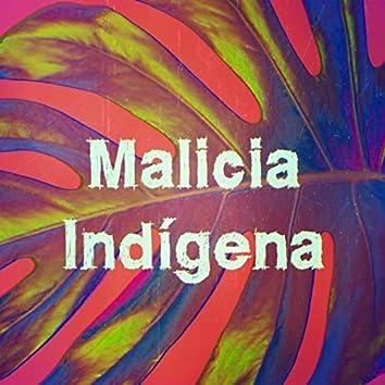 Malicia Indígena