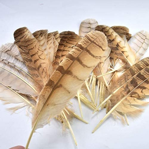 aloyrHe 10pcs Natural Rare Super beauty product restock quality top Eagle Crafts Hea Feather Carnival for Max 66% OFF