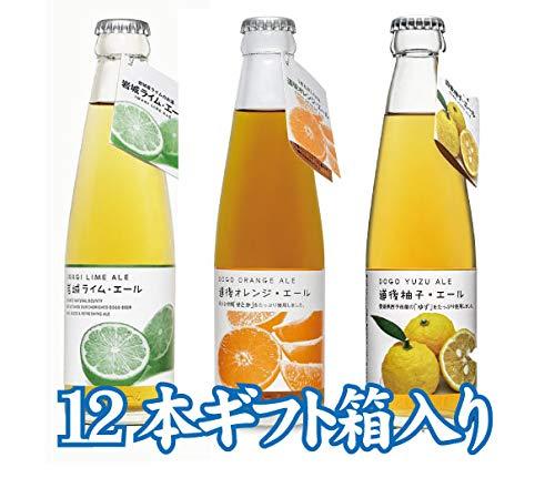 道後エール オレンジ・柚子・岩城ライム【12本飲み比べセット】【プレゼント】