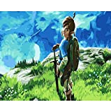 CYKEJISD Puzzle 1000 Piezas Puzzle 3D The Legend of Zelda Breath of The Wild Imágenes del Arte De La Pared del Juego DIY para La Sala De Estar 75X50Cm