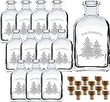 """gouveo 12er Set 100 ml Glasflaschen Apotheker Quadrat mit Gravur Frohe Weihnachten 1"""" incl. Holzgriffkorken - Leere Flaschen incl. 28-seitige Rezeptbroschüre -"""