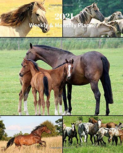 2021 Weekly and Monthly Planner: Horse Collage - Monthly Calendar with U.S./UK/ Canadian/Christian/Jewish/Muslim Holidays– Calendar in Review/Notes 8 x 10 in.-Nature Animals For Work Business School