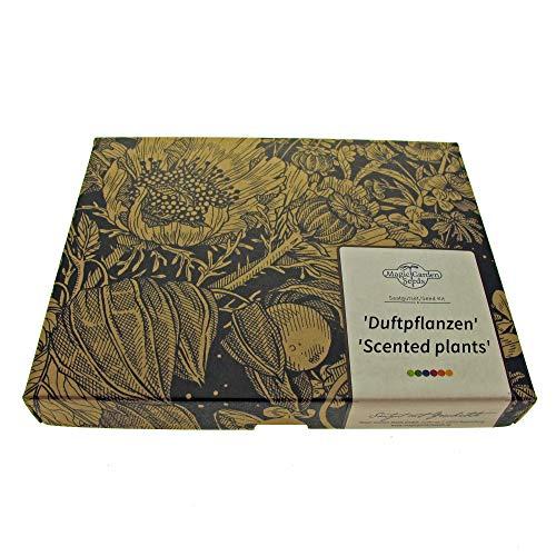 Duftpflanzen - Samen-Geschenkset mit 6 prachtvoll duftenden Blühpflanzen