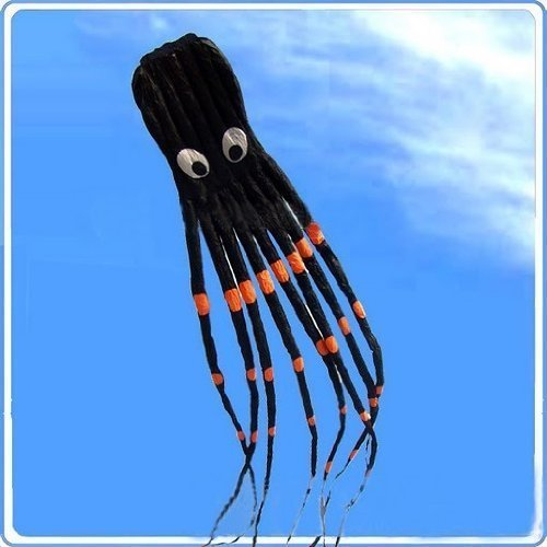 7M Large Octopus Paul Parafoil Kite Black with Handle & String, Beach Park Outdoor Fun