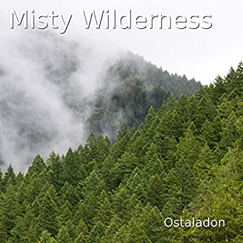 Misty Wilderness