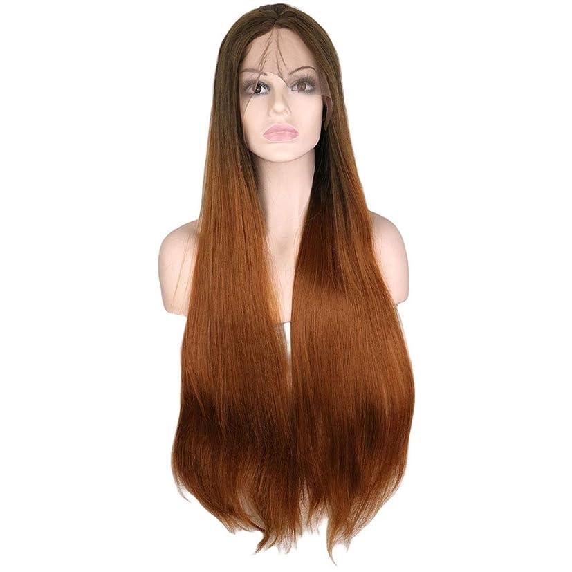 置換区画不屈BOBIDYEE 30インチレースフロントウィッグオンブルブラウンロングストレートウィッグミドルパートコスプレコスチュームデイリーパーティーウィッグ本物の髪の複合毛髪レースウィッグロールプレイングウィッグ (色 : Ombre Brown, サイズ : 30