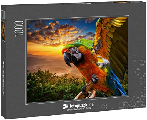 Puzzle 1000 Teile Papagei Vogel Hintergrund - Klassische Puzzle mit edler Motiv-Schachtel, Fotopuzzle-Kollektion \'Tiere\'