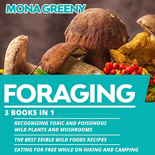 Foraging Audiobook By Mona Greeny cover art