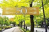 Bandera de 50 años, Bodas de Oro, poliéster, Aprox. 40 x 180 cm...