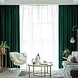HHJJ Cortinas supersuaves, opacas, opacas, con reducción de ruido, plisadas, cortinas térmicas de terciopelo verde oscuro, para sala de estar, 20473 x 1 W4A (color: verde, tamaño: 250 x 250 cm)