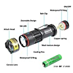 DARKBEAM Blacklight Flashlights Portable 395nm Led Flashlight Mini Handheld Torch Black Light Detector for Dog Urine, Pet Stains 12